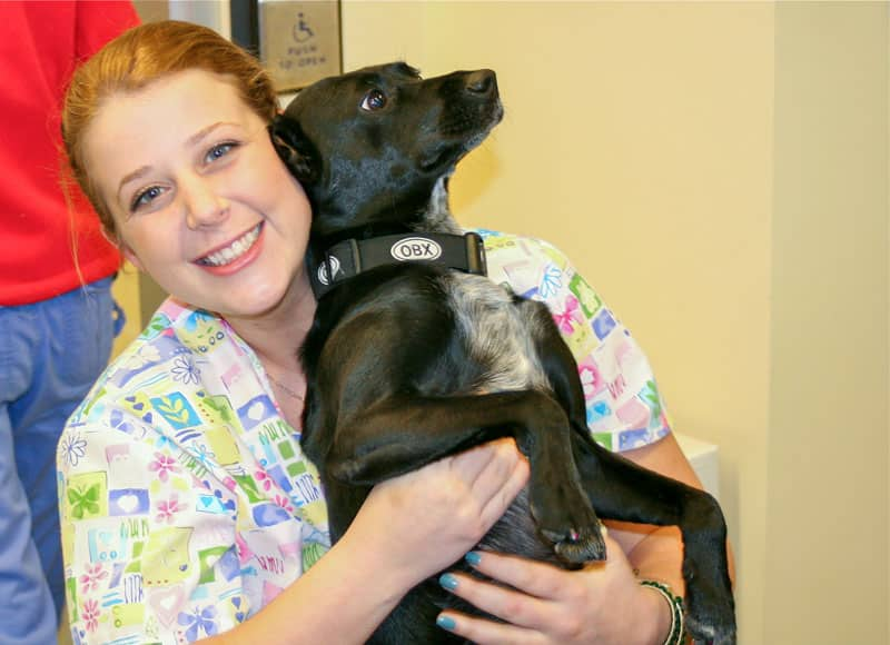 Peachtree Hills Animal Hospital - Rebecca with Pup